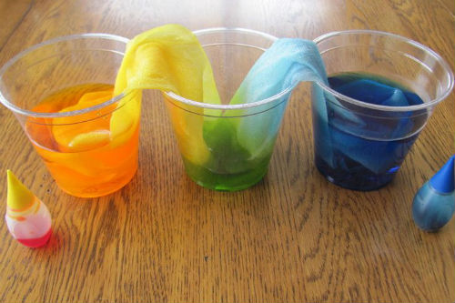 Capillary Action Draws Water up Against Gravity